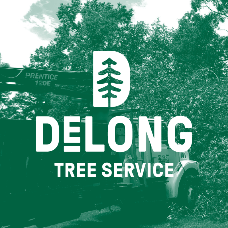 DeLong Tree Service